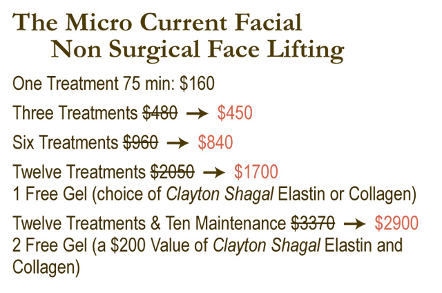 micro current facial, non surgical face lifting, Torrance, CA